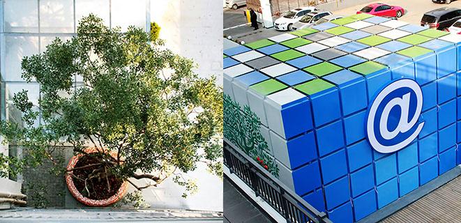 上海智慧树创意产业园区联合工会成立